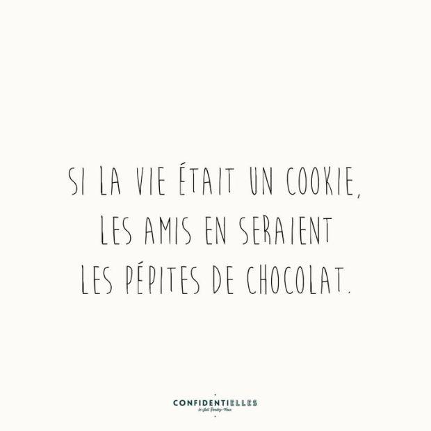 si la vie était un cookie, les amis en seraient les pépites de chocolat confidentielles